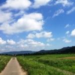 natsu_mini
